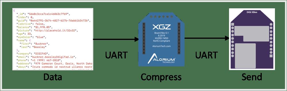 XGZ Compression Module Graphic